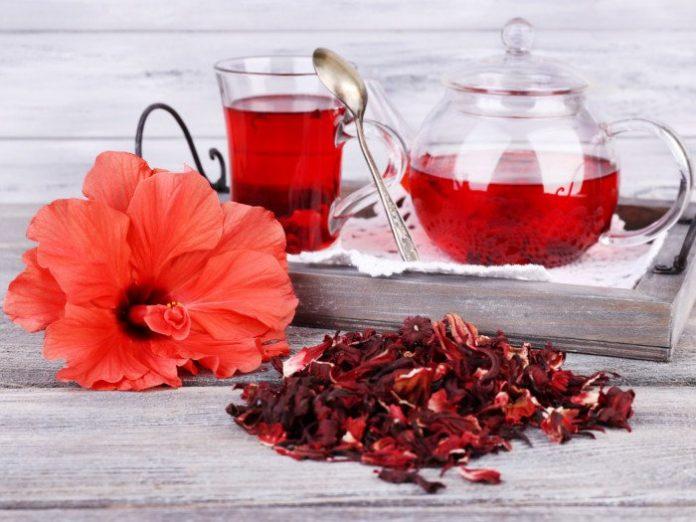 hibiskus caj zdravlje