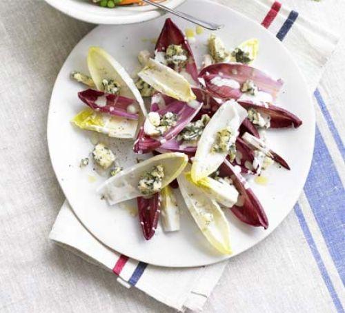 cikorija salata